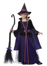 2015 New!!! California Costumes Hocus Pocus Girl Kid Halloween Costumes ... - $37.00