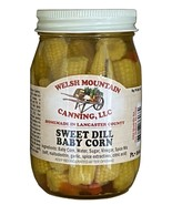 SWEET DILL BABY CORN - Amish Handmade Sweetcorn in Sweet Kosher Dill Bri... - $6.90+