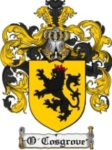 O'Cosgrove Family Crest / Coat of Arms JPG or PDF Image Download - $6.99