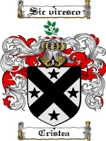 Primary image for Cristea Family Crest / Coat of Arms JPG or PDF Image Download