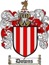 Downs Family Crest / Coat of Arms JPG or PDF Image Download - $6.99