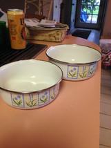 Enamel Bowl Set of 2 Lilac Tabletops Unlimited  - $8.00