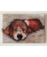 Basset Hound Puppy Dog Art Magnet Solomon - $6.50