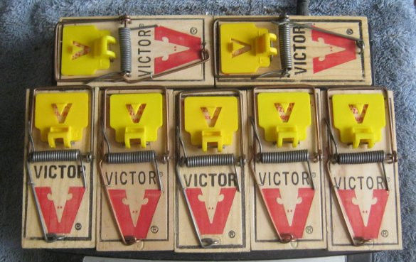 "Get 7 NEW VICTOR MOUSE SNAP TRAPS TRAP WOOD 4"" -FREE SHIPPING"