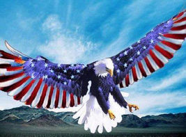 American EagLe FLag Wings Cross Stitch Pattern***L@@K*** - $4.95