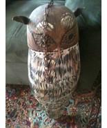 Owl1 thumbtall