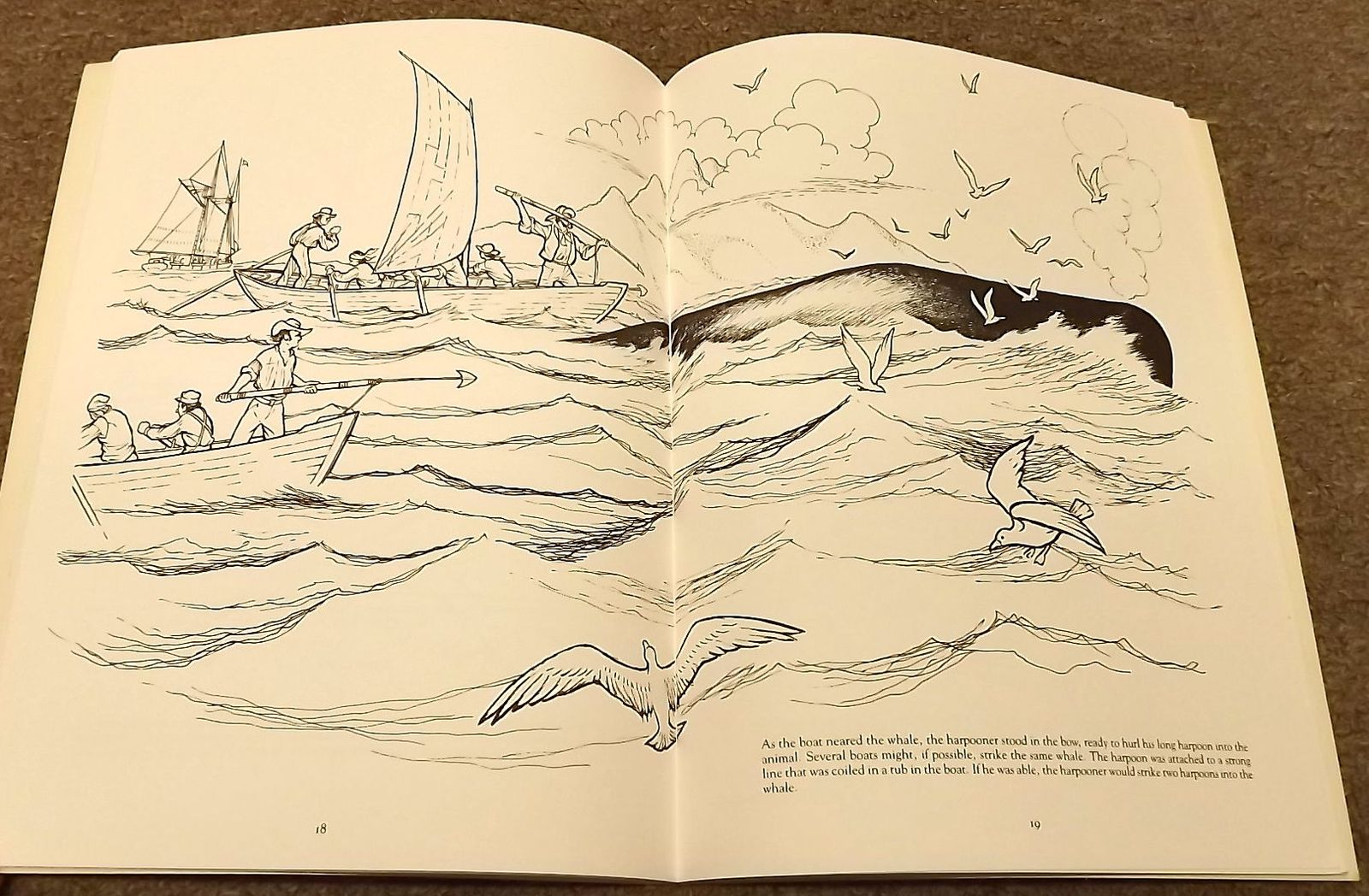 5 Dover Coloring books The Story of Whaling, Whales and Dolphins ...