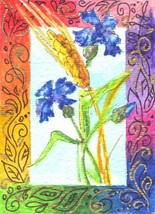 "Akimova: CORNFLOWER, garden, flower, blue, green, ACEO, 2.5""x3.5"" - $4.00"
