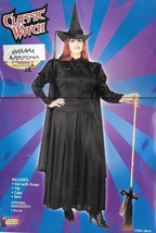 Classic Witch Costume Plus Size Fits To An 18 - $40.00