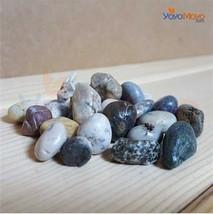 Natural Sea Stone, Terrarium Drainage Material - $5.99