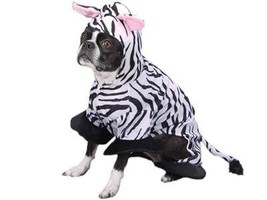 Zack & Zoey Wild Safari Animal Zebra Halloween Dog Costume Medium - $44.95