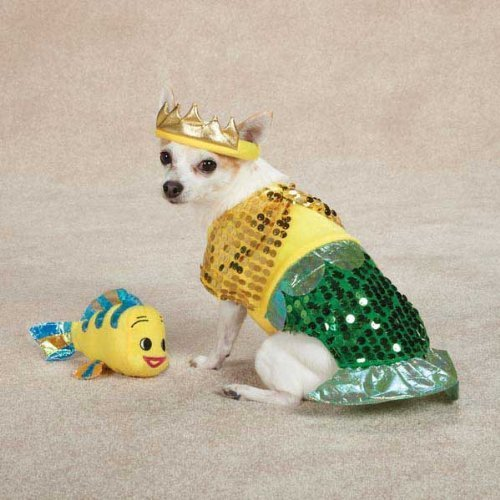 Zack & Zoey Lil' Furrmaid Dog Costume, Large, Gold