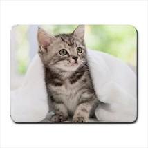 American Wirehair Mousepad - Cat Kitten - $7.71