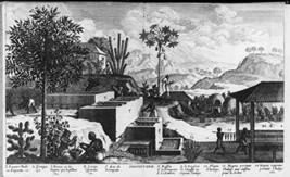 West Indies: manufacture of indigo [Kitchen] - $12.99