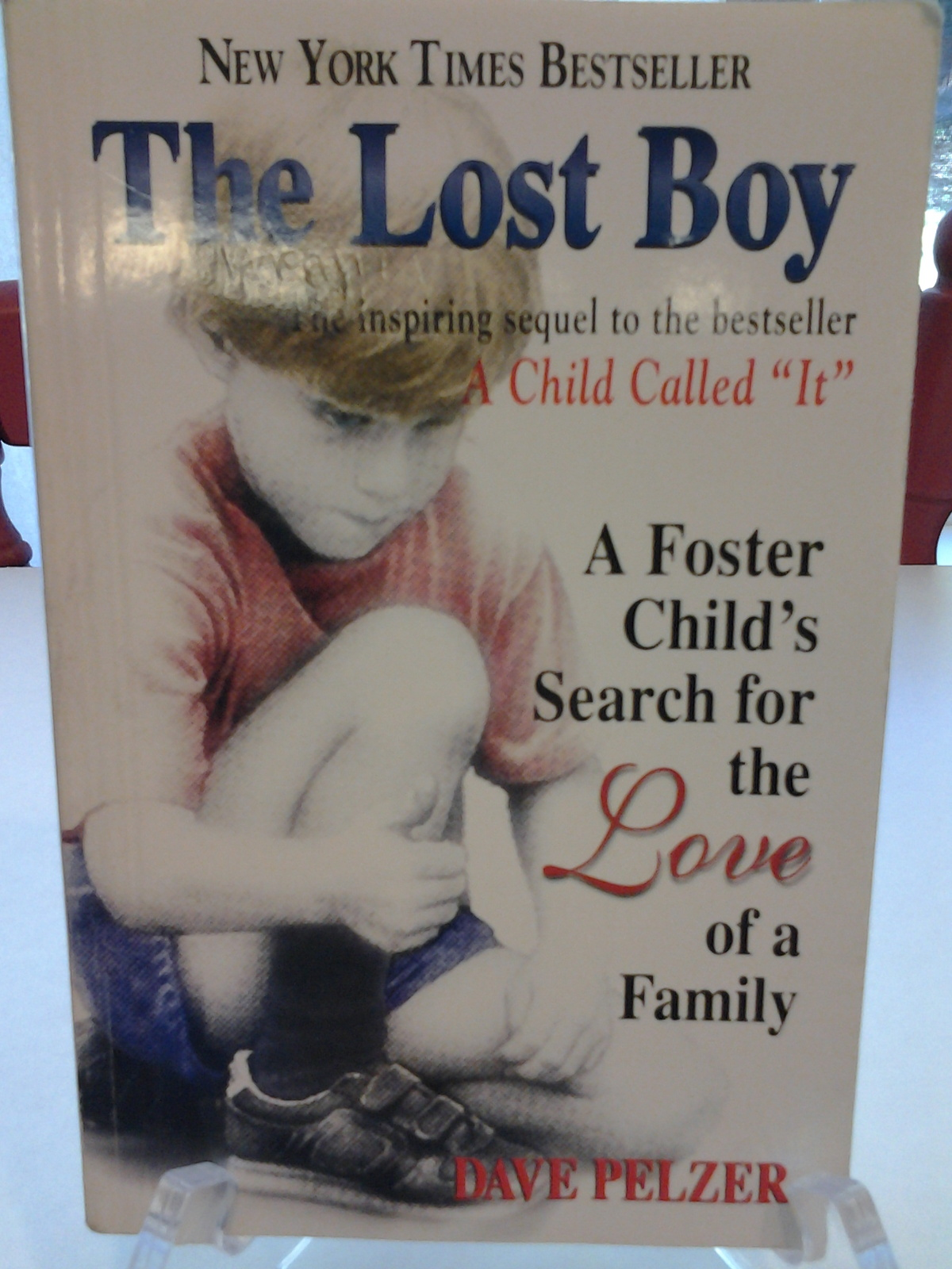 the lost boy by dave pelzer analysis essay