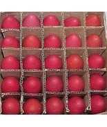 25 Vintage C-9 Ceramic RED Christmas Replacement Light Bulbs C9 - Box # 14 - $29.99