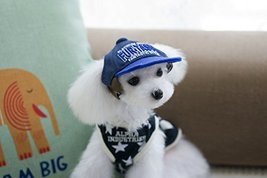 NACOCO Pet Cap Embroidered Blue Hip-Hop hat Dog Hap (hip hop hat, Medium) - $15.83