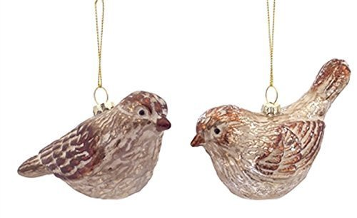 Realistic Naturalistic Glass Birds Set of 2 Ornaments [Kitchen]