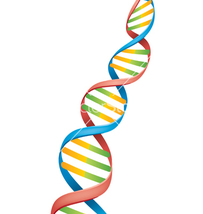 24 Strand DNA Activation Reiki - $11.06
