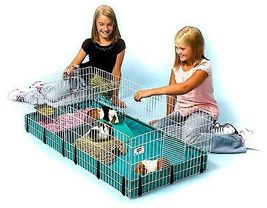 Midwest Homes for Pets Large Interactive Guinea Pig Hamster Cage Habitat... - $79.00