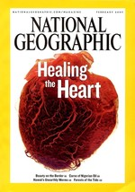 National Geographic Feb 2007, Healing the Heart, Nigerian Oil, Hawaii's ... - $3.95