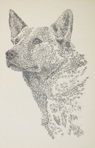 Australian Cattle Dog Art #38 Signed Kline Word Drawing. Dogs Name Added Free. - $49.45