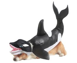 Animal Planet Orca Dog Costume, Medium, Black/White [Misc.] - $16.04