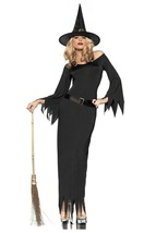 Wicked Witch Diva Costume - $35.00