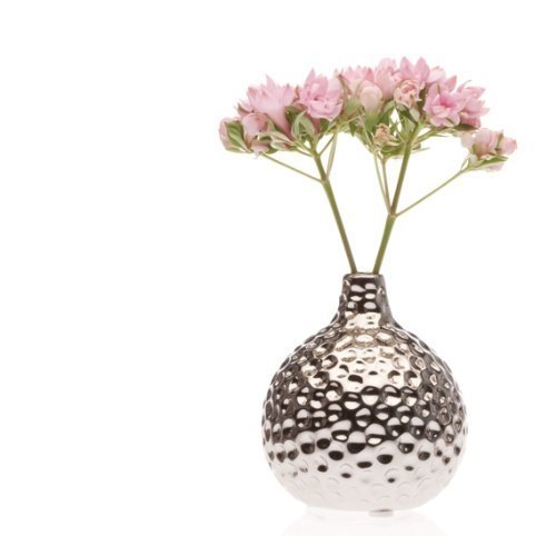 Chive Nature Gourd Vase, Metallic [Misc.]