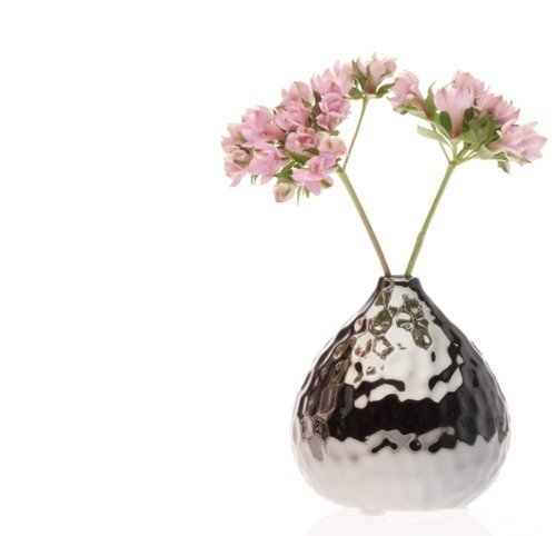 Chive Nature Gourd Vase, Dark Chrome [Misc.]