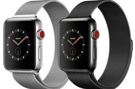 Apple Watch Series 3 38mm   42mm GPS + Cellular Stainless Steel Milanese Loop