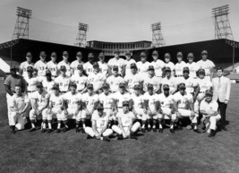 MLB 1969 Seattle Pilots Black & White Team Picture 8 X 10 Photo Picture - $6.99