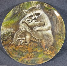 A Protective Embrace Collector Plate Signs Of Love Yin-Rei Hicks Raccoon... - $11.95