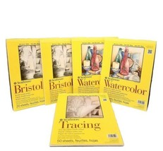 Lot of 5 Strathmore 9x12 300 Series 2-Bristol Smooth, 2- Watercolor, 1- ... - $55.17