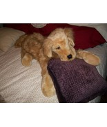Folkmanis Golden Retriever Plush Dog Puppet - $100.00