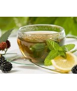 Lenier's English Style Chocolate Mint flavored  2/8 count (16) tea bags - $4.59