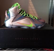 Nike Lebron XII PRM Trillion Dollar Man Sz 11 - $220.00