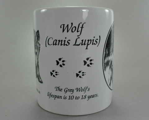 Grey Wolf Drawings Canis Lupis White Coffee Mug Cup