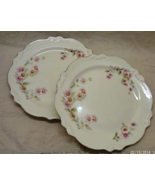 Two Vintage HOMER LAUGHLIN Dinner Plates in VIRGINIA ROSE Pattern - $12.00
