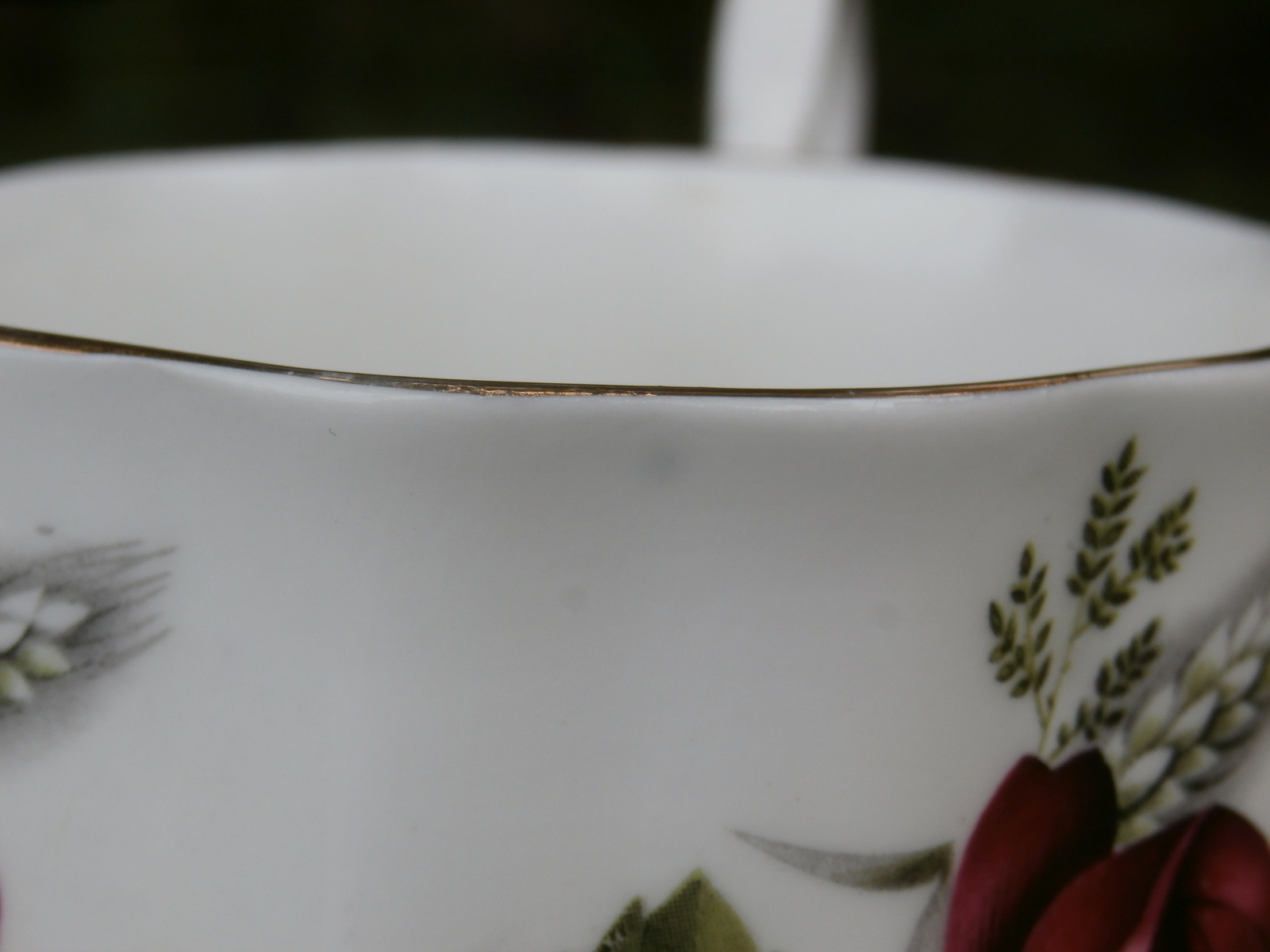 Elizabethan Rose Cup - Ornate Vintage Bone China, Made in England