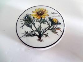 Villeroy & Boch Adonis Vernalis Botanica Porcelain Trinket Box - $32.90 CAD