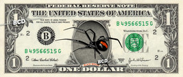 BLACK WIDOW Spider on REAL Dollar Bill Cash Money Bank Note Currency Dinero - $14.44