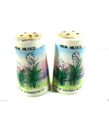 VINTAGE PORCELAIN NEW MEXICO TRAVEL SALT OR PEPPER SHAKERS SET - $25.84