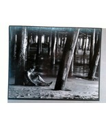 2 Vintage Photographs by Robert Hemmi Black & White circa 1960's - $15.99
