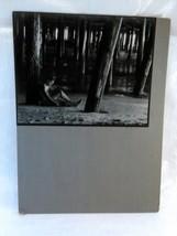 2 Vintage Photographs by Robert Hemmi Black & White circa 1960's image 4