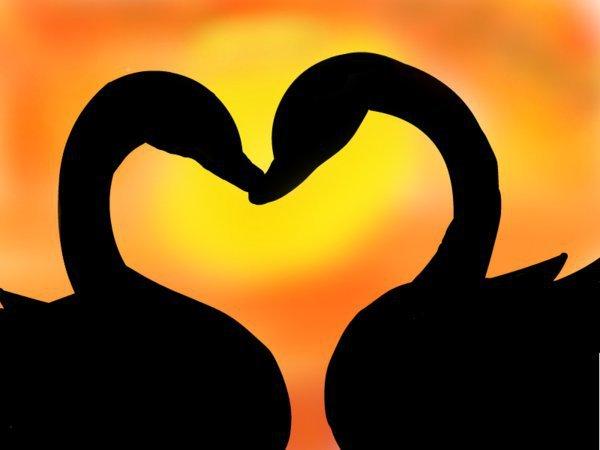 Love & Desire Elite Advanced Spell Casting Guaranteed Proven Romance Sex Pagan