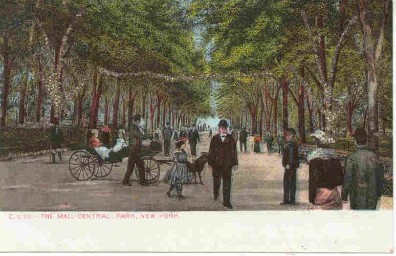 Primary image for Central Park Mall New York City Vintage 1906 Post Card