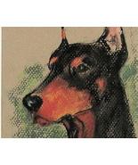 Doberman Dog Art Solomon Pastel Drawing - $160.00