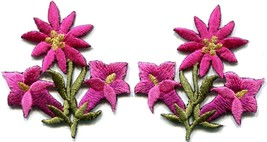 Hot pink lilies pair flowers floral bouquet boho applique iron-on patch ... - $3.29
