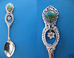 Primary image for SALMON ARM BC. Souvenir Collector Spoon DOGWOOD FLOWER Charm ROCKY MOUNTAINS